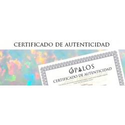 Certificado Auteticidad